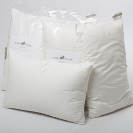 4-x-pillow-web